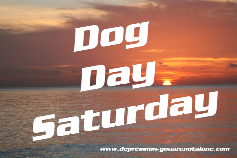 the words Dog Day Saturday over ocean sunrise (copyrighted)